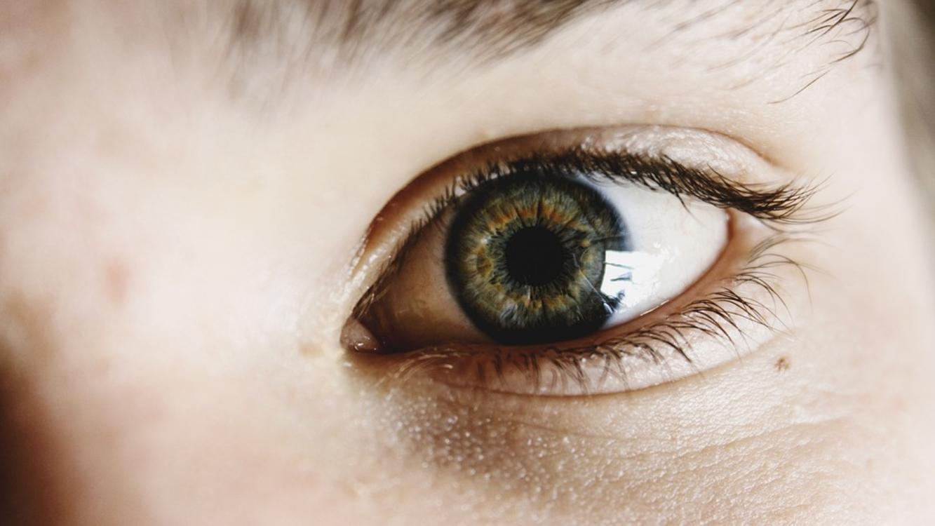 Descubra interessantes curiosidades sobre olhos com a nossa equipa!