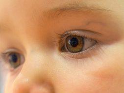 Olho seco (2)